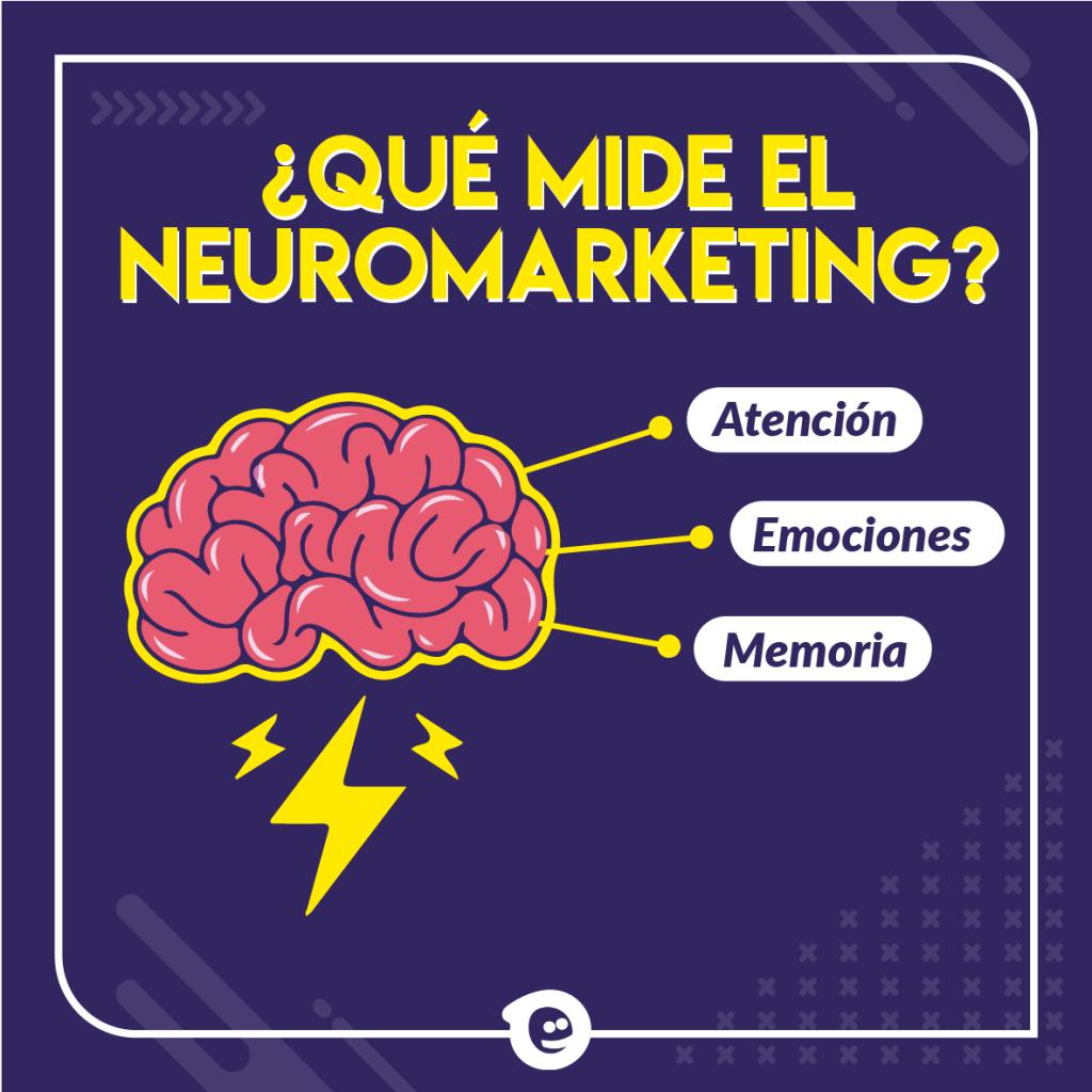 Qué mide el neuromarketing